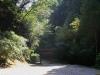2011年秋の風景2