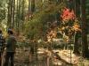 2011年悠久の森ウォーキング5